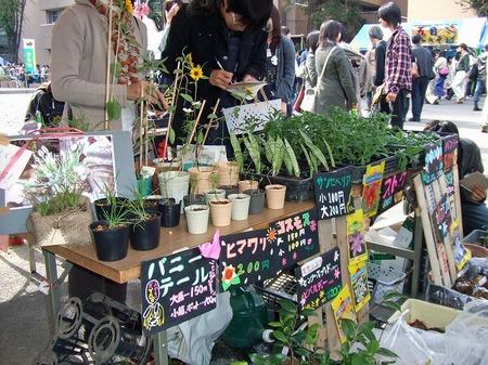 s-収穫祭12.jpg