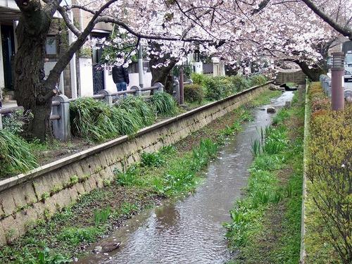 s-呑川2.jpg