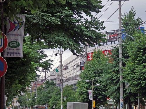 s-街路樹.jpg