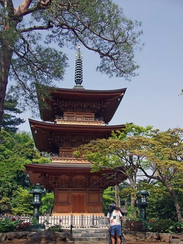 s-豪徳寺2.jpg