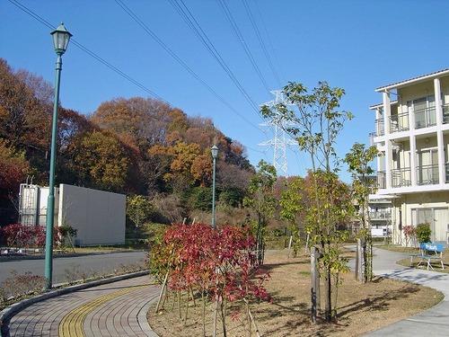 s-青葉台1.jpg
