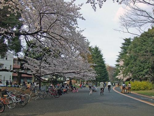 s-駒沢公園.jpg